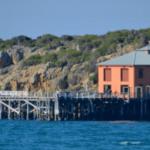 The Wharf Locavore